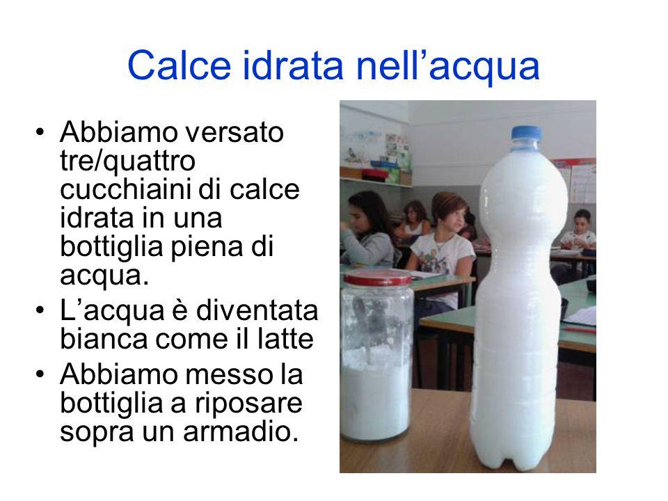 Calce idrata nell'acqua Abbiamo versato tre/quattro cucchiaini di calce idrata in una bottiglia piena di acqua. L'acqua è diventata bianca come il lat
