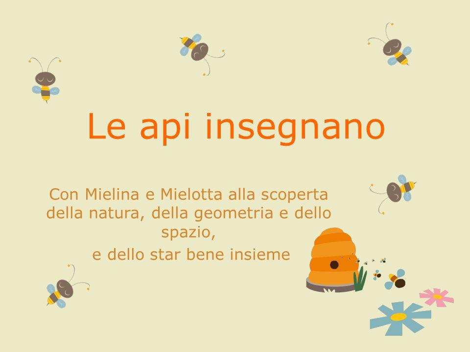 Le api insegnano Con Mielina e Mielotta alla scoperta della natura, della geometria e dello spazio, e dello star bene insieme