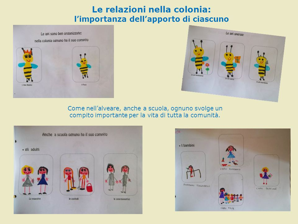 Le relazioni nella colonia: l'importanza dell'apporto di ciascuno Come nell'alveare, anche a scuola, ognuno svolge un compito importante per la vita d