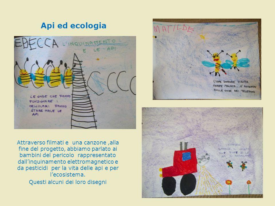 Api ed ecologia Attraverso filmati e una canzone,alla fine del progetto, abbiamo parlato ai bambini del pericolo rappresentato dall'inquinamento elett