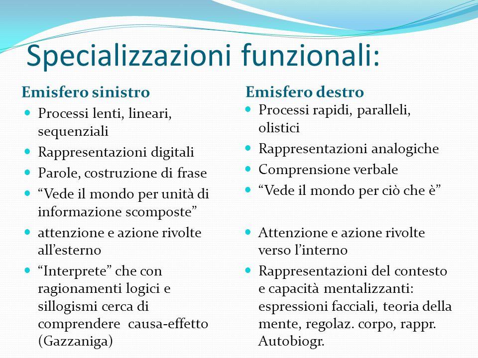 Specializzazioni funzionali: Emisfero sinistro Emisfero destro Processi lenti, lineari, sequenziali Rappresentazioni digitali Parole, costruzione di f