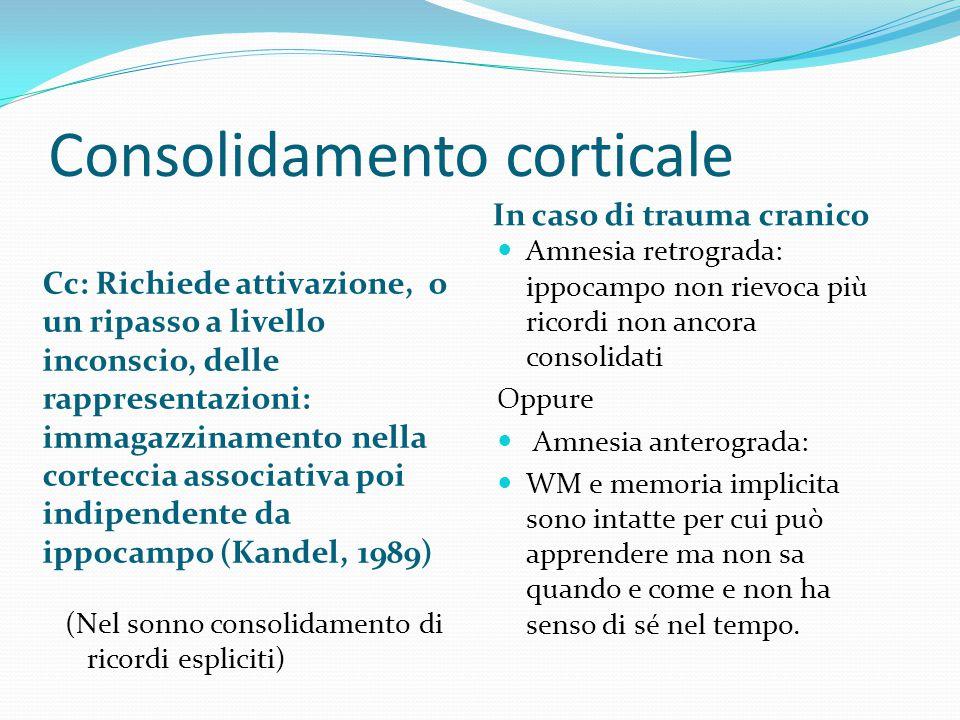 Consolidamento corticale Cc: Richiede attivazione, o un ripasso a livello inconscio, delle rappresentazioni: immagazzinamento nella corteccia associat