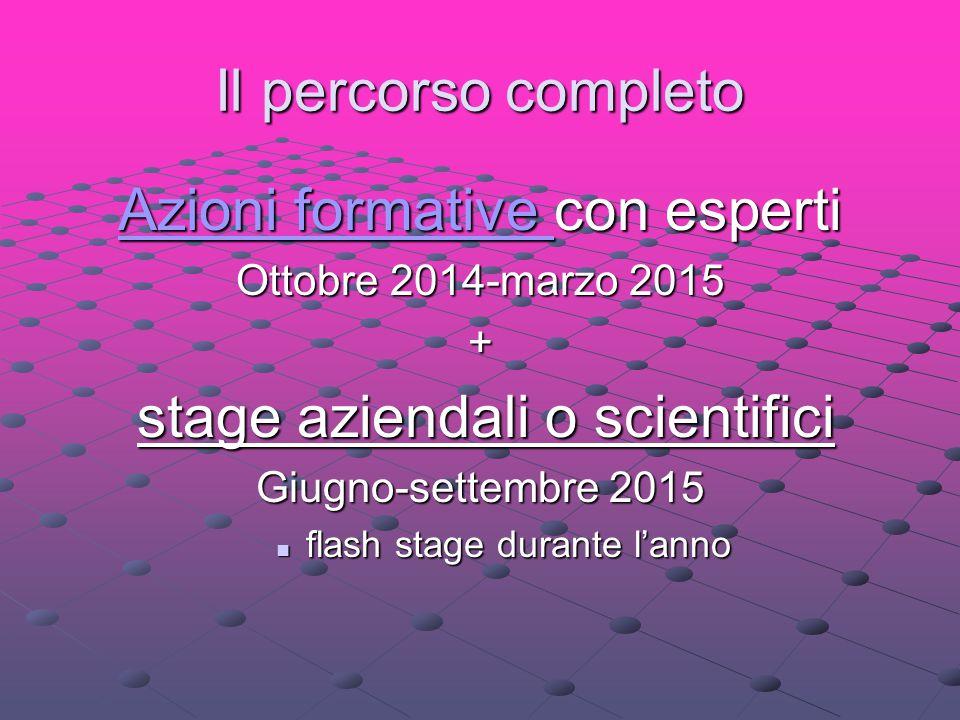 Il percorso completo Azioni formative Azioni formative con esperti Azioni formative Ottobre 2014-marzo 2015 + stage aziendali o scientifici stage azie