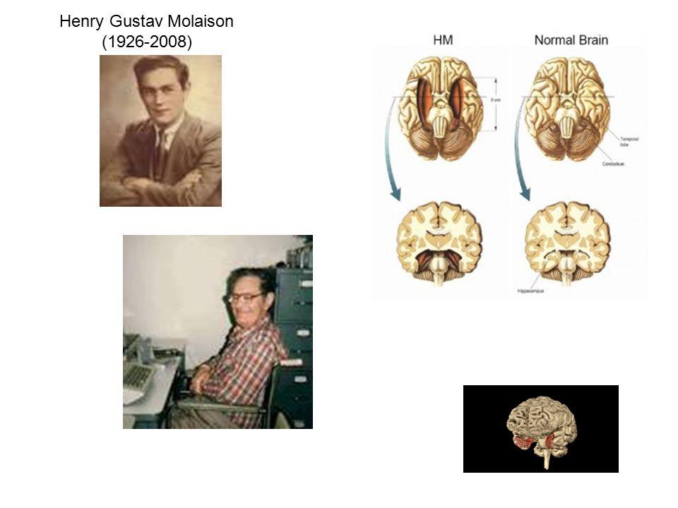 Henry Gustav Molaison (1926-2008)