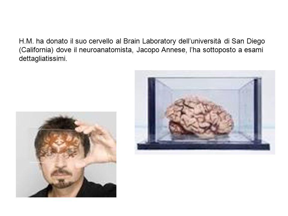 H.M. ha donato il suo cervello al Brain Laboratory dell'università di San Diego (California) dove il neuroanatomista, Jacopo Annese, l'ha sottoposto a