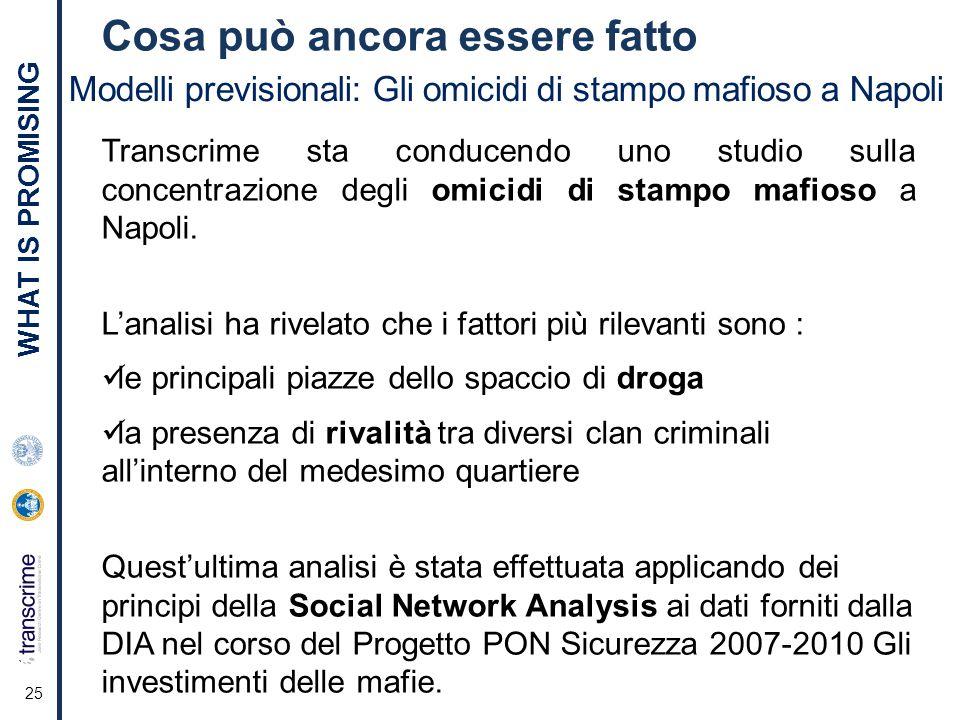 Cosa può ancora essere fatto 25 Modelli previsionali: Gli omicidi di stampo mafioso a Napoli Transcrime sta conducendo uno studio sulla concentrazione degli omicidi di stampo mafioso a Napoli.