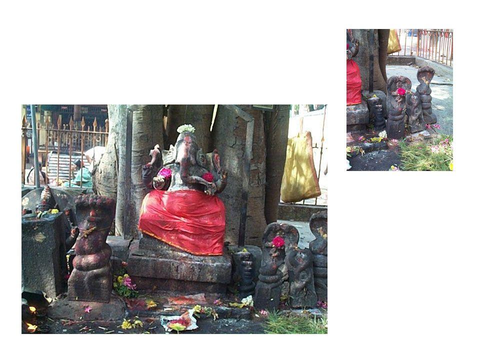 Seconda Settimana Interviste e luoghi Chennai Chidambaram Rio Cauvery Trichy
