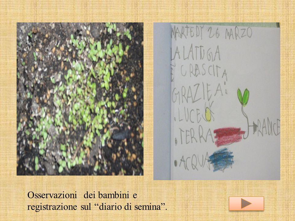 """Osservazioni dei bambini e registrazione sul """"diario di semina""""."""
