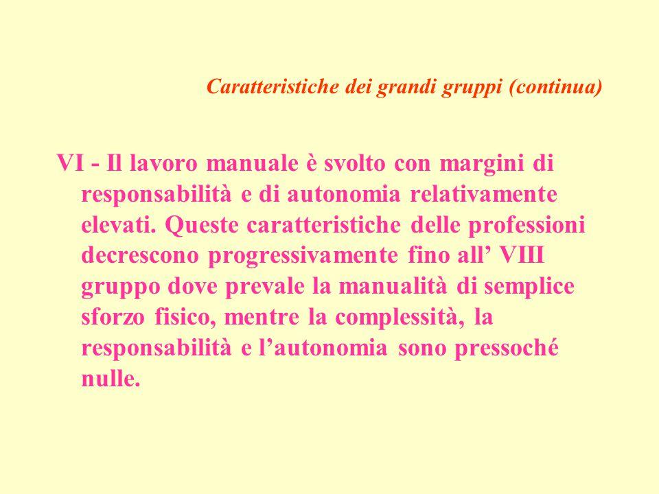 Caratteristiche dei grandi gruppi (continua) VI - Il lavoro manuale è svolto con margini di responsabilità e di autonomia relativamente elevati.