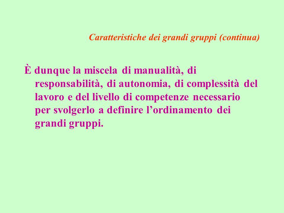 Caratteristiche dei grandi gruppi (continua) È dunque la miscela di manualità, di responsabilità, di autonomia, di complessità del lavoro e del livello di competenze necessario per svolgerlo a definire l'ordinamento dei grandi gruppi.