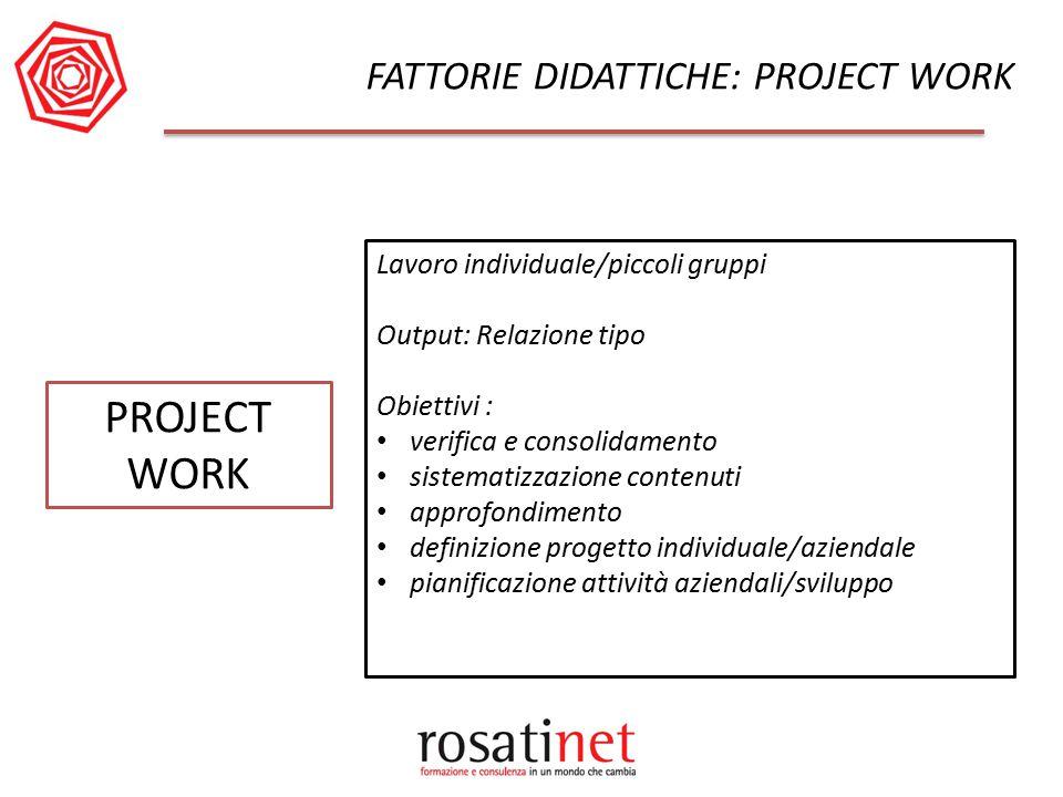 PROJECT WORK Lavoro individuale/piccoli gruppi Output: Relazione tipo Obiettivi : verifica e consolidamento sistematizzazione contenuti approfondiment