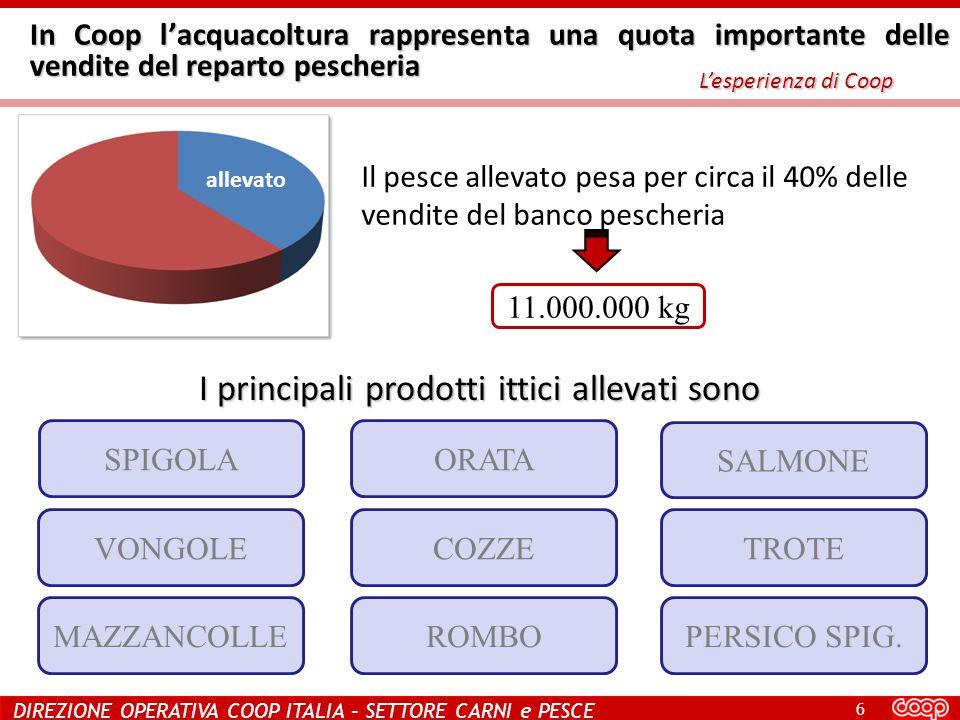 6 DIREZIONE OPERATIVA COOP ITALIA – SETTORE CARNI e PESCE In Coop l'acquacoltura rappresenta una quota importante delle vendite del reparto pescheria L'esperienza di Coop I principali prodotti ittici allevati sono Il pesce allevato pesa per circa il 40% delle vendite del banco pescheria allevato SPIGOLAORATA SALMONE VONGOLECOZZETROTE MAZZANCOLLEROMBOPERSICO SPIG.