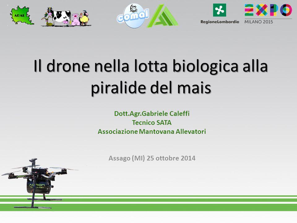 Il drone nella lotta biologica alla piralide del mais Dott.Agr.Gabriele Caleffi Tecnico SATA Associazione Mantovana Allevatori Assago (MI) 25 ottobre 2014