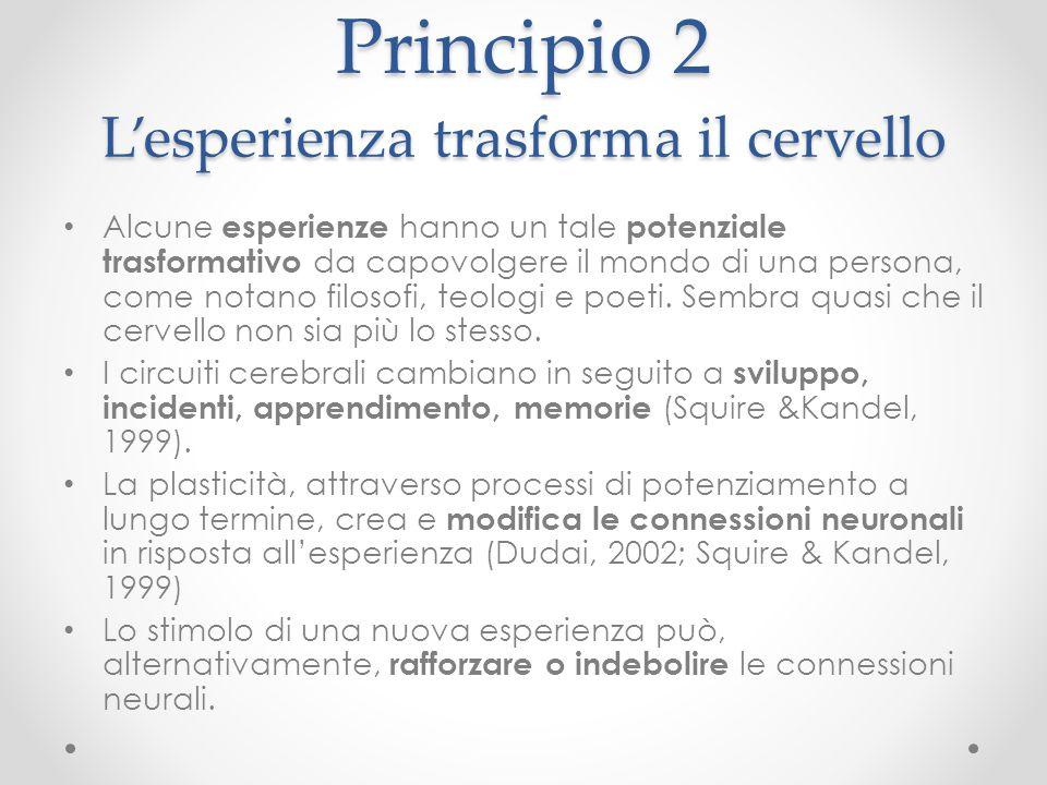 Principio 2 L'esperienza trasforma il cervello Alcune esperienze hanno un tale potenziale trasformativo da capovolgere il mondo di una persona, come n
