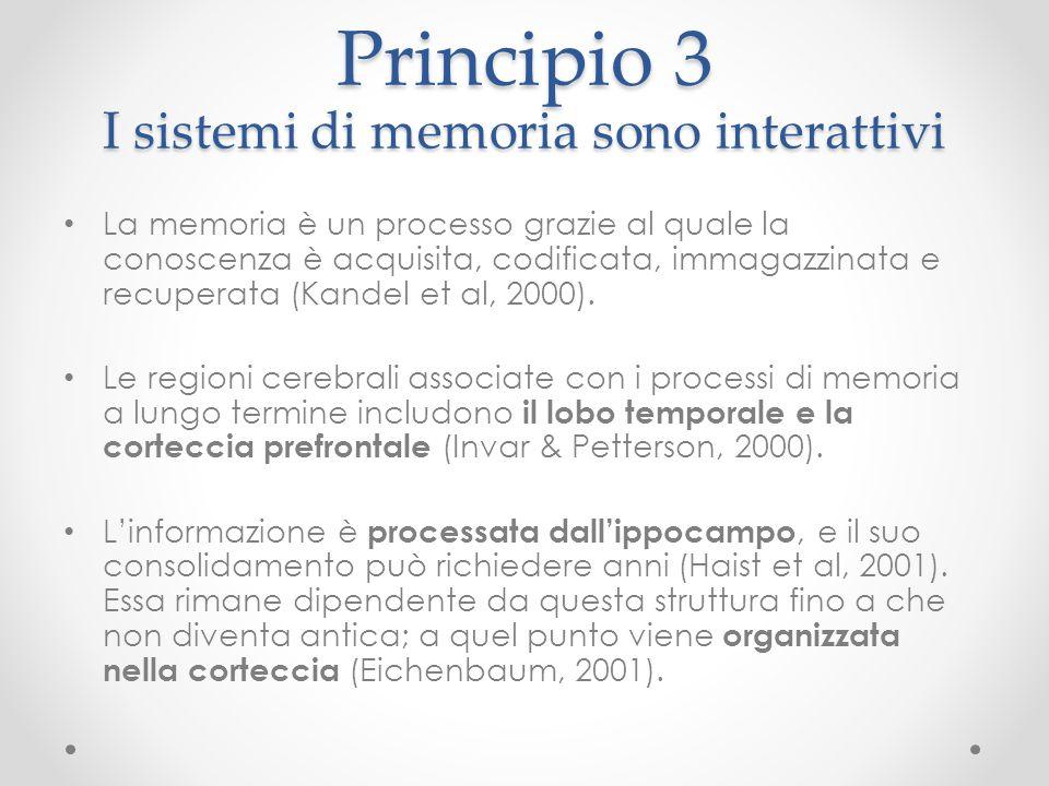 Principio 3 I sistemi di memoria sono interattivi La memoria è un processo grazie al quale la conoscenza è acquisita, codificata, immagazzinata e recu