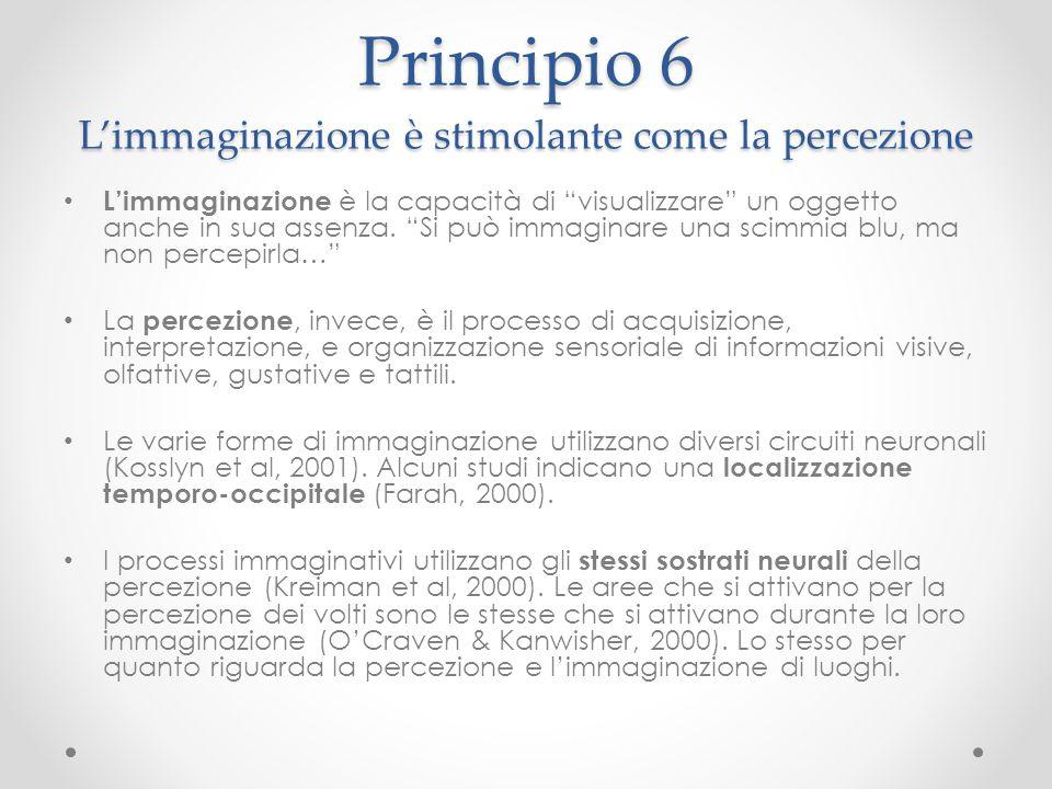 """Principio 6 L'immaginazione è stimolante come la percezione L'immaginazione è la capacità di """"visualizzare"""" un oggetto anche in sua assenza. """"Si può i"""