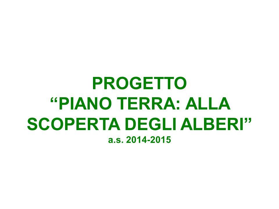 """PROGETTO """"PIANO TERRA: ALLA SCOPERTA DEGLI ALBERI"""" a.s. 2014-2015"""
