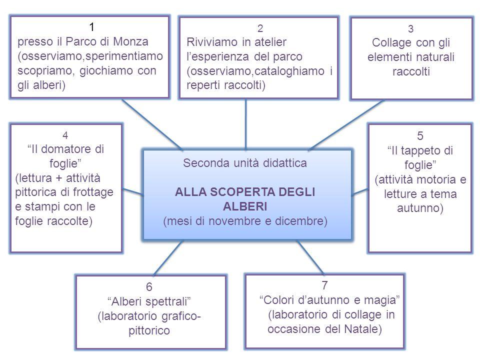 Seconda unità didattica ALLA SCOPERTA DEGLI ALBERI (mesi di novembre e dicembre) 1 presso il Parco di Monza (osserviamo,sperimentiamo scopriamo, gioch