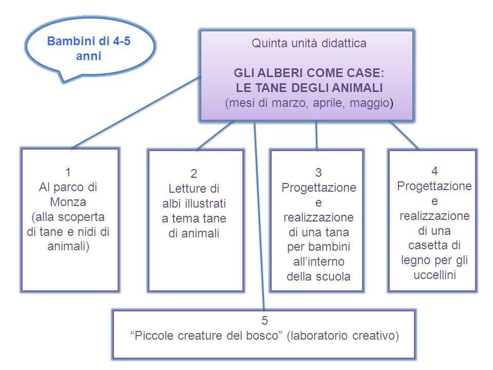 Bambini di 4-5 anni Quinta unità didattica GLI ALBERI COME CASE: LE TANE DEGLI ANIMALI (mesi di marzo, aprile, maggio) 1 Al parco di Monza (alla scope