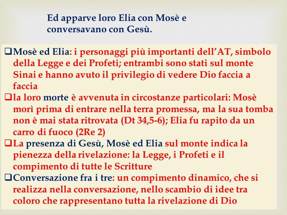  Mosè ed Elia: i personaggi più importanti dell'AT, simbolo della Legge e dei Profeti; entrambi sono stati sul monte Sinai e hanno avuto il privilegi