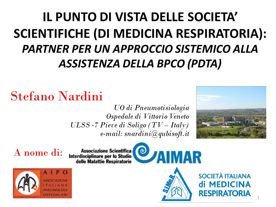 1 IL PUNTO DI VISTA DELLE SOCIETA' SCIENTIFICHE (DI MEDICINA RESPIRATORIA): PARTNER PER UN APPROCCIO SISTEMICO ALLA ASSISTENZA DELLA BPCO (PDTA) Stefano Nardini UO di Pneumotisiologia Ospedale di Vittorio Veneto ULSS -7 Pieve di Soligo (TV – Italy) e-mail: snardini@qubisoft.it A nome di:
