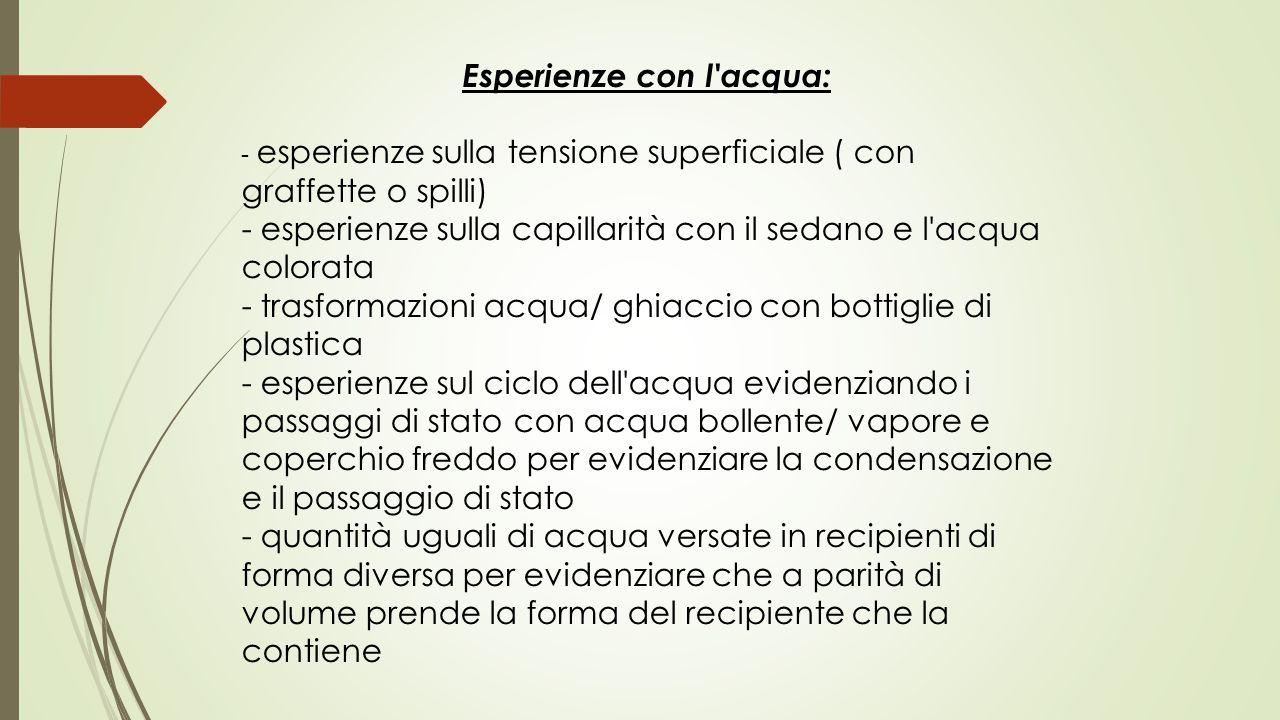 Esperienze con l'acqua: - esperienze sulla tensione superficiale ( con graffette o spilli) - esperienze sulla capillarità con il sedano e l'acqua colo