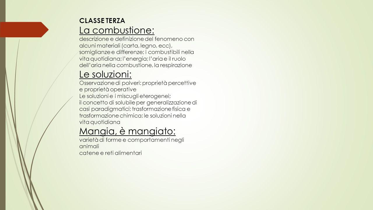 CLASSE TERZA La combustione: descrizione e definizione del fenomeno con alcuni materiali (carta, legno, ecc), somiglianze e differenze; i combustibili
