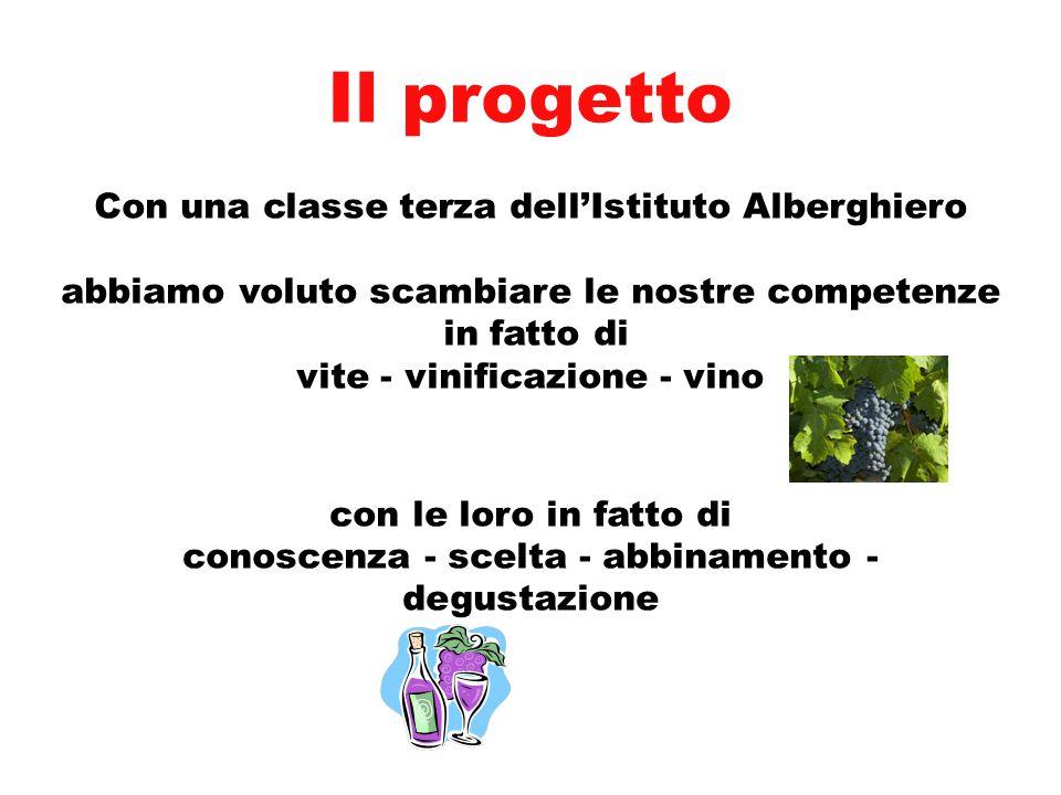 Il progetto Con una classe terza dell'Istituto Alberghiero abbiamo voluto scambiare le nostre competenze in fatto di vite - vinificazione - vino con l
