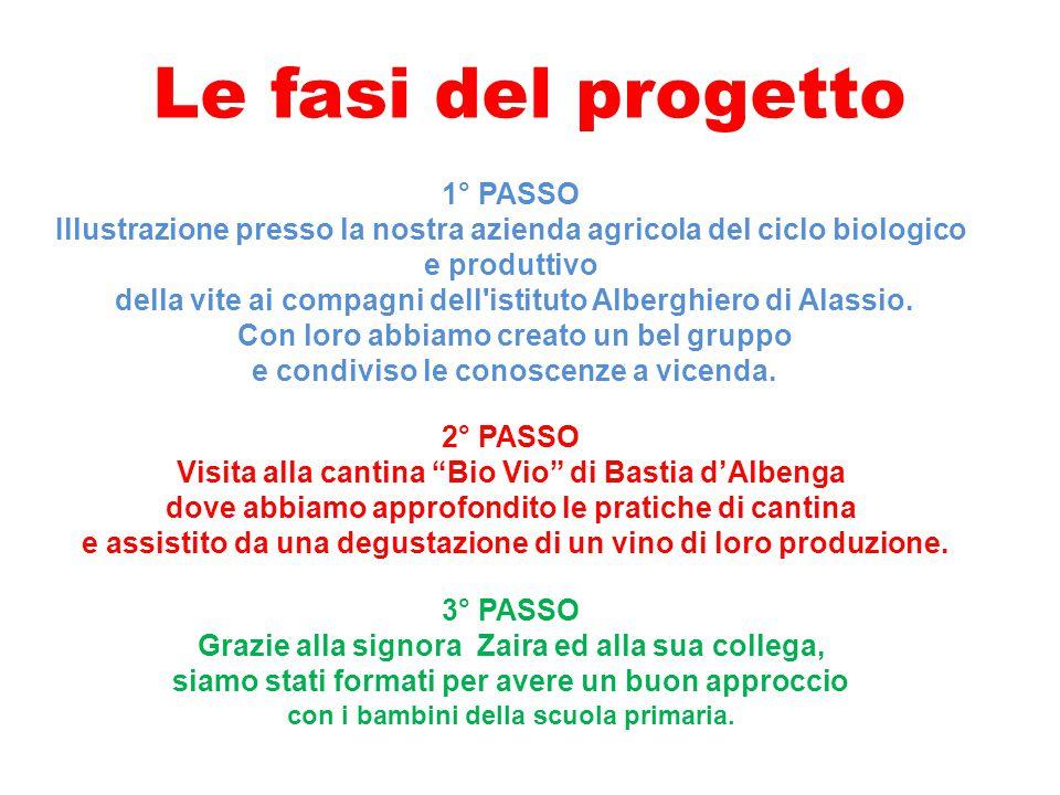 1° PASSO Illustrazione presso la nostra azienda agricola del ciclo biologico e produttivo della vite ai compagni dell'istituto Alberghiero di Alassio.
