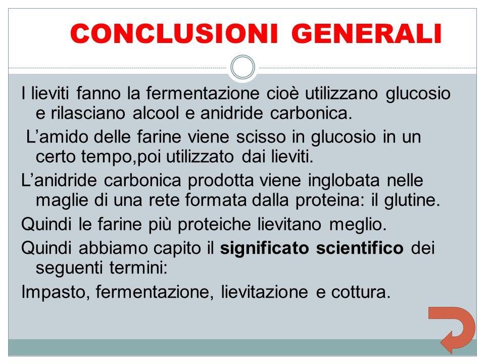 CONCLUSIONI GENERALI I lieviti fanno la fermentazione cioè utilizzano glucosio e rilasciano alcool e anidride carbonica. L'amido delle farine viene sc
