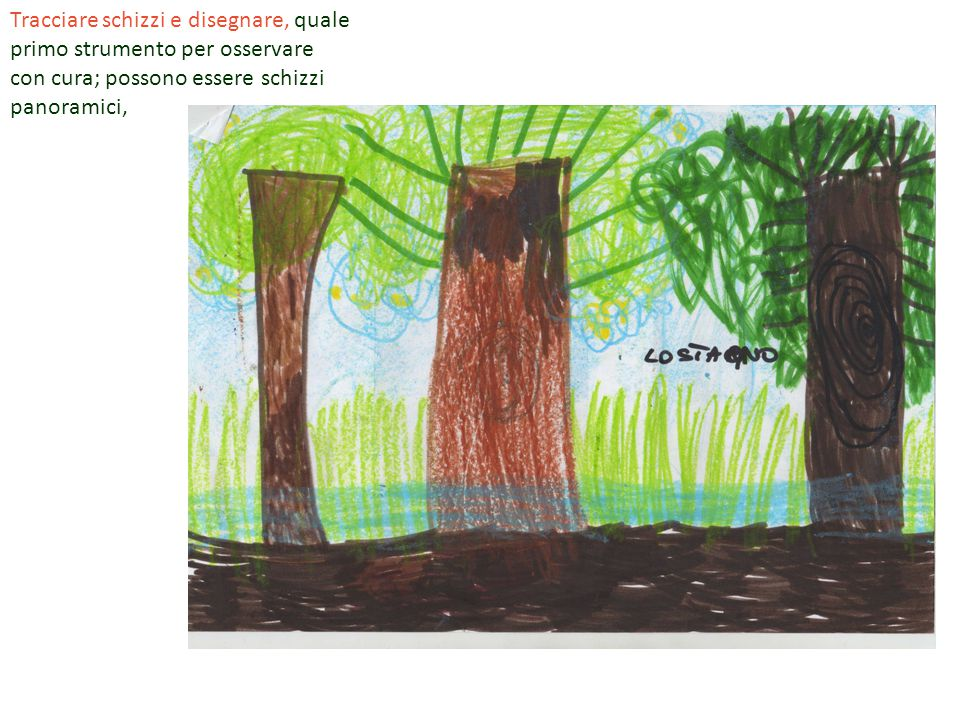 Tracciare schizzi e disegnare, quale primo strumento per osservare con cura; possono essere schizzi panoramici,