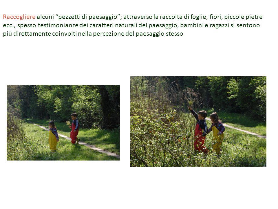 """Raccogliere alcuni """"pezzetti di paesaggio""""; attraverso la raccolta di foglie, fiori, piccole pietre ecc., spesso testimonianze dei caratteri naturali"""