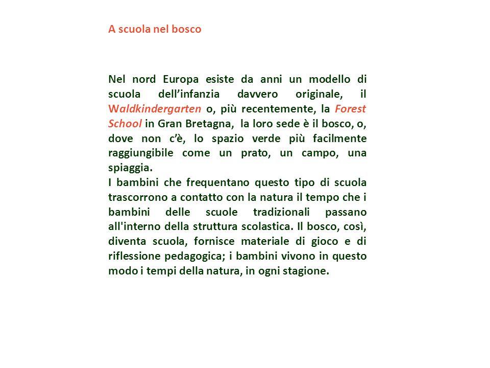 A scuola nel bosco Nel nord Europa esiste da anni un modello di scuola dell'infanzia davvero originale, il Waldkindergarten o, più recentemente, la Fo