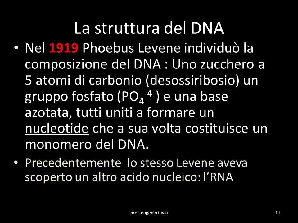 La struttura del DNA Nel 1919 Phoebus Levene individuò la composizione del DNA : Uno zucchero a 5 atomi di carbonio (desossiribosio) un gruppo fosfato