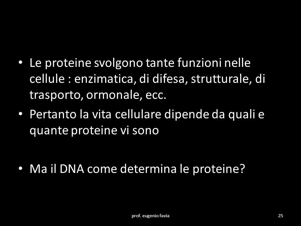 Le proteine svolgono tante funzioni nelle cellule : enzimatica, di difesa, strutturale, di trasporto, ormonale, ecc. Pertanto la vita cellulare dipend