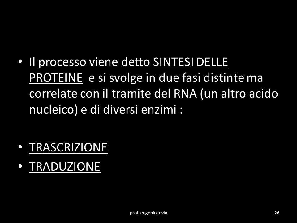 Il processo viene detto SINTESI DELLE PROTEINE e si svolge in due fasi distinte ma correlate con il tramite del RNA (un altro acido nucleico) e di div