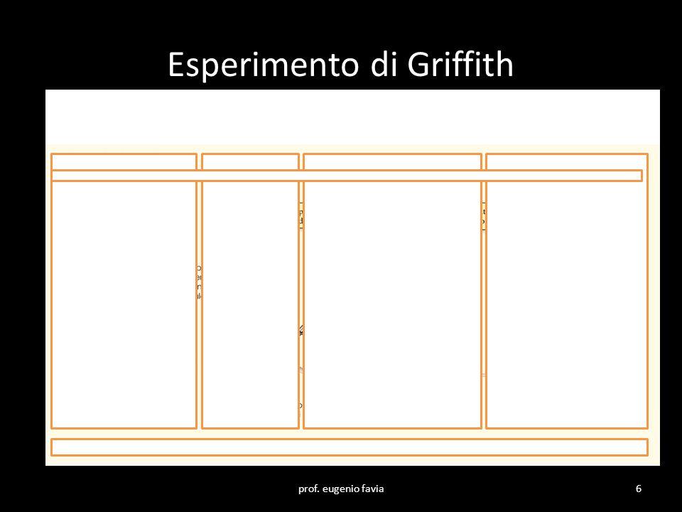 Nel 1944 Oswald Avery e i suoi collaboratori riuscirono, dopo lunghi e laboriosi esperimenti, ad individuare qual'era la sostanza trasformante osservata da Griffith.