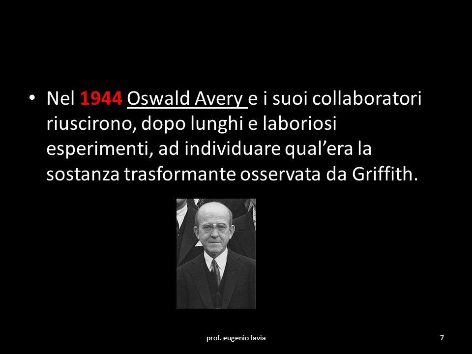 Nel 1944 Oswald Avery e i suoi collaboratori riuscirono, dopo lunghi e laboriosi esperimenti, ad individuare qual'era la sostanza trasformante osserva