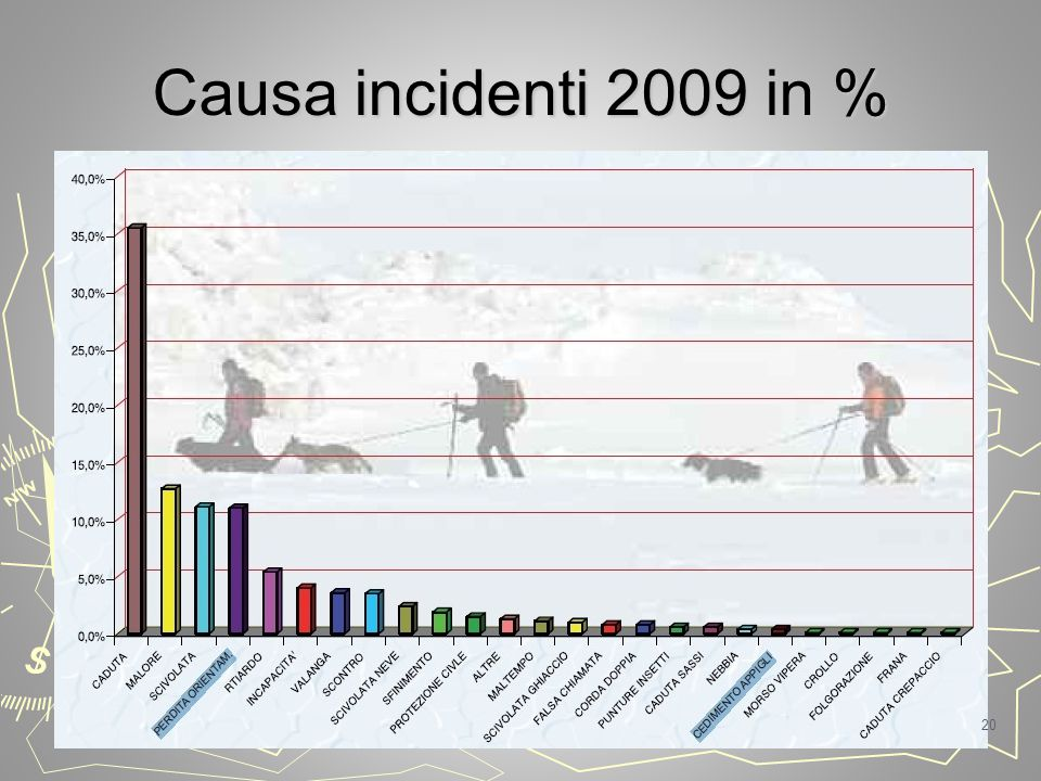 Causa incidenti 2009 in % 20