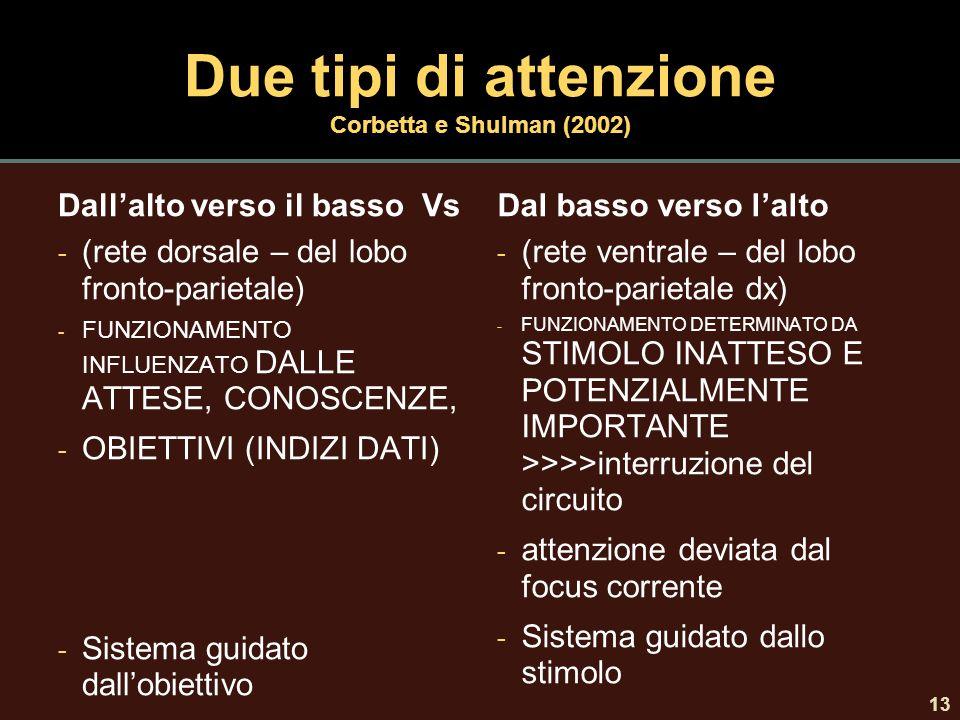 Due tipi di attenzione Corbetta e Shulman (2002) Dall'alto verso il basso Vs - (rete dorsale – del lobo fronto-parietale) - FUNZIONAMENTO INFLUENZATO