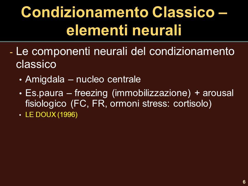 6 Condizionamento Classico – elementi neurali - Le componenti neurali del condizionamento classico Amigdala – nucleo centrale Es.paura – freezing (imm