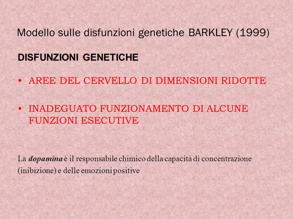 Modello sulle disfunzioni genetiche BARKLEY (1999) DISFUNZIONI GENETICHE AREE DEL CERVELLO DI DIMENSIONI RIDOTTE INADEGUATO FUNZIONAMENTO DI ALCUNE FU