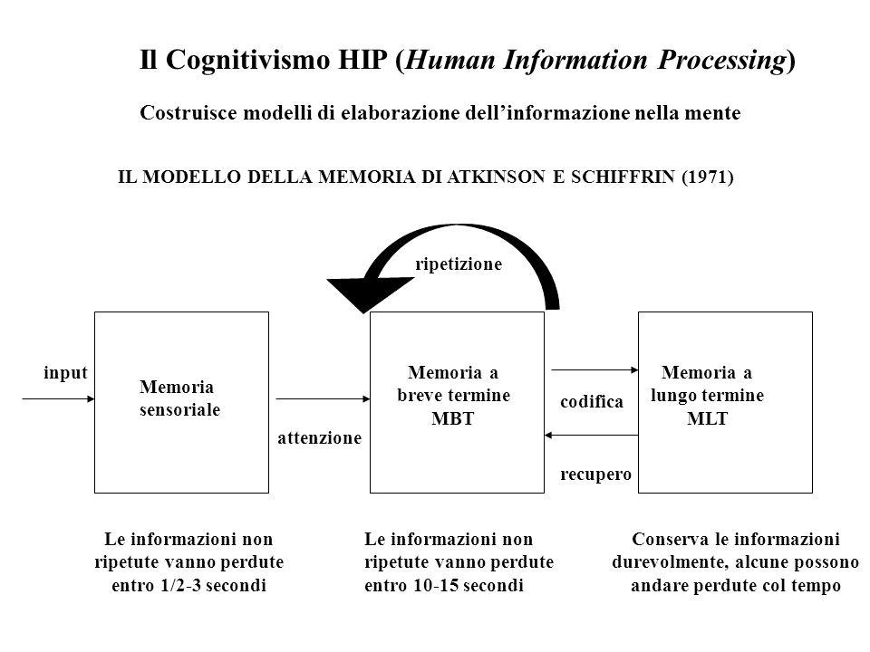 Il Cognitivismo HIP (Human Information Processing) Costruisce modelli di elaborazione dell'informazione nella mente IL MODELLO DELLA MEMORIA DI ATKINS