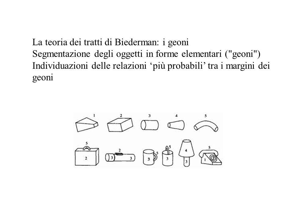 La teoria dei tratti di Biederman: i geoni Segmentazione degli oggetti in forme elementari ( geoni ) Individuazioni delle relazioni 'più probabili' tra i margini dei geoni