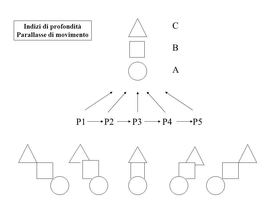P1 P2 P3 P4 P5 Indizi di profondità Parallasse di movimento CBACBA
