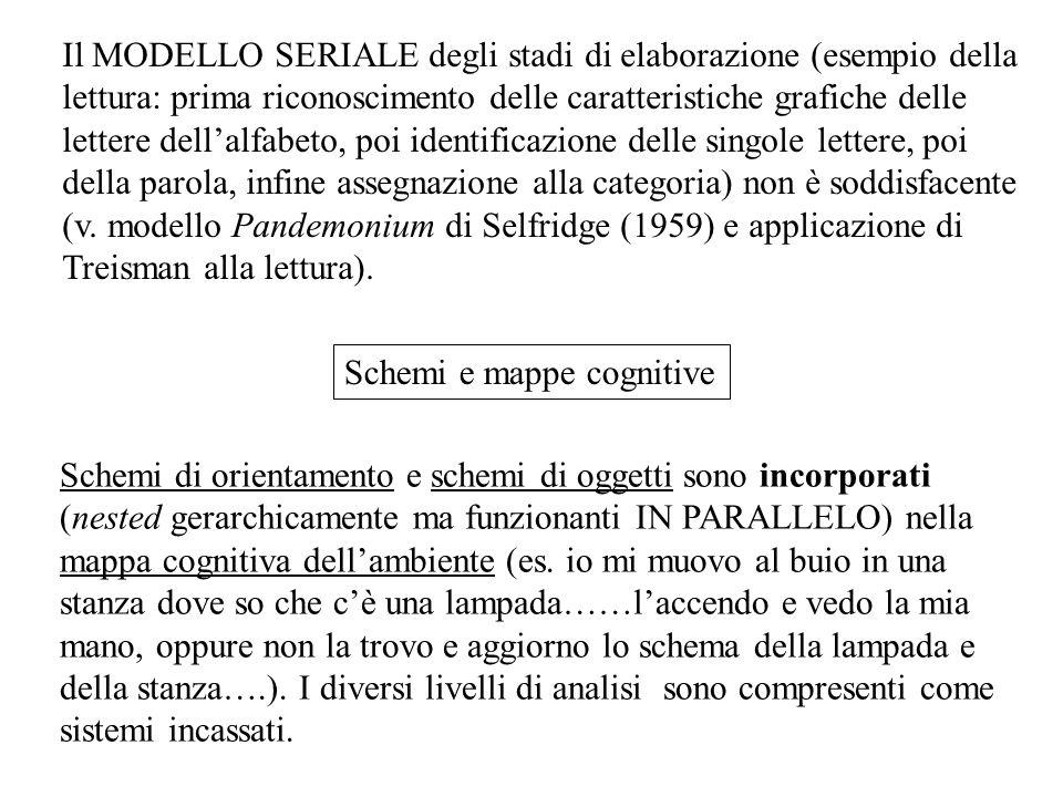 Schemi di orientamento e schemi di oggetti sono incorporati (nested gerarchicamente ma funzionanti IN PARALLELO) nella mappa cognitiva dell'ambiente (