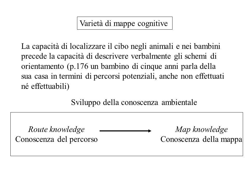 La capacità di localizzare il cibo negli animali e nei bambini precede la capacità di descrivere verbalmente gli schemi di orientamento (p.176 un bambino di cinque anni parla della sua casa in termini di percorsi potenziali, anche non effettuati né effettuabili) Varietà di mappe cognitive Sviluppo della conoscenza ambientale Route knowledge Conoscenza del percorso Map knowledge Conoscenza della mappa