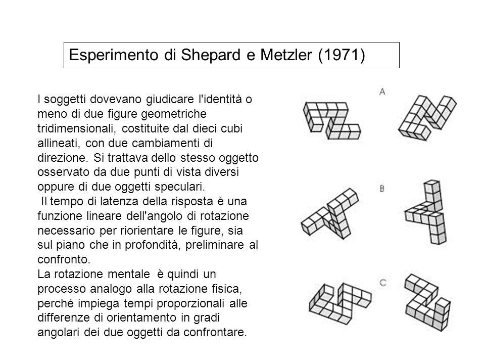 I soggetti dovevano giudicare l'identità o meno di due figure geometriche tridimensionali, costituite dal dieci cubi allineati, con due cambiamenti di
