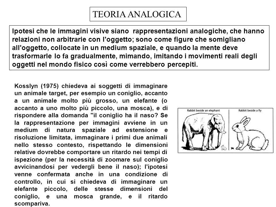 lpotesi che le immagini visive siano rappresentazioni analogiche, che hanno relazioni non arbitrarie con l'oggetto; sono come figure che somigliano al