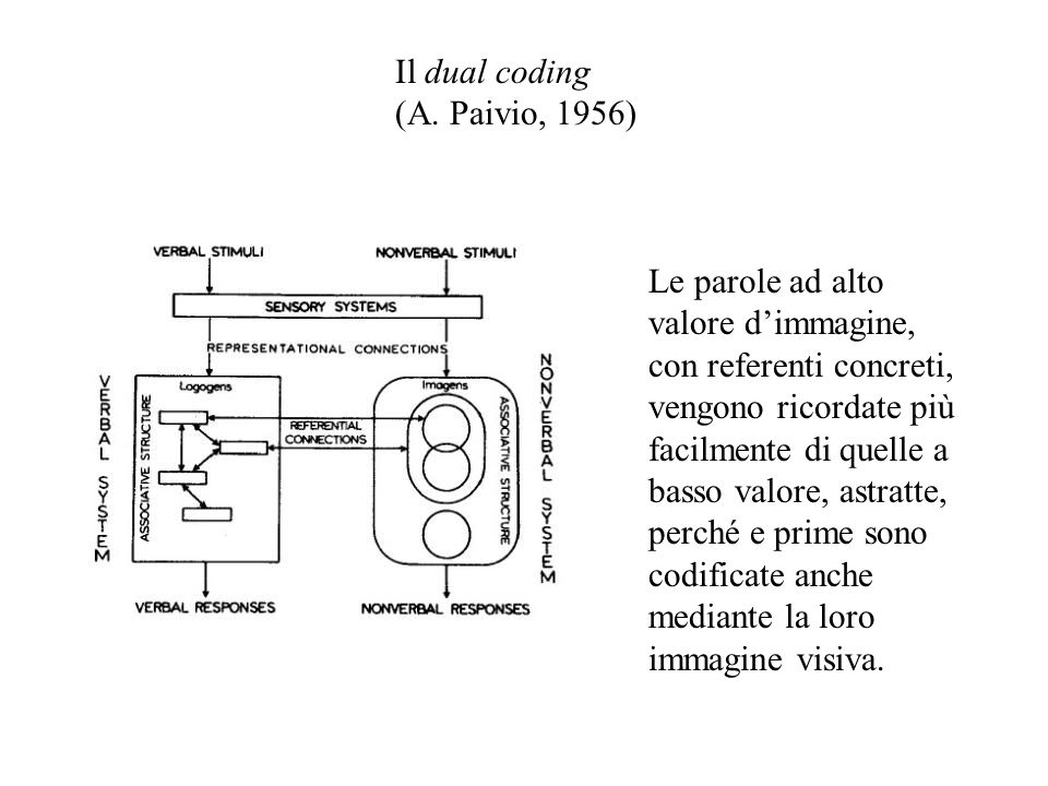 Il dual coding (A. Paivio, 1956) Le parole ad alto valore d'immagine, con referenti concreti, vengono ricordate più facilmente di quelle a basso valor